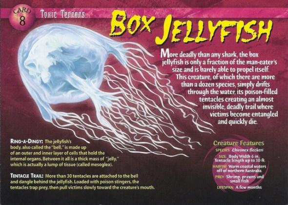 Box Jellyfish Wierd N Wild Creatures Wiki Fandom Powered By Wikia Medium