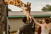 Blog Log Michelle Obama Says Goodbye With Jimmy Fallon Oregon Zoo Medium